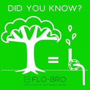 DYK-Trees_are_waterpumps-Flo-Bro