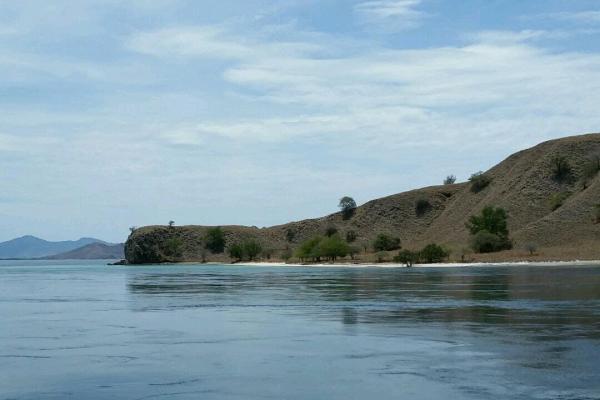 Flores Sea- Indonesia - Flo-Bro