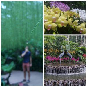 Botanical Gardens Singapore