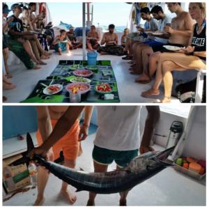 Boat trip - Marlin