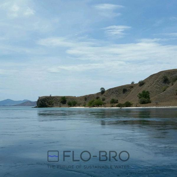 Flores Sea- Indonesia - Flo-Bro